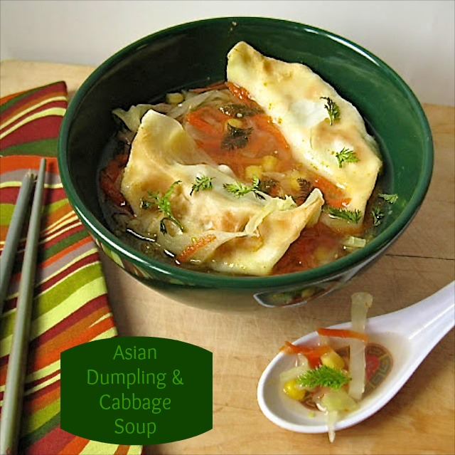 Asian Dumpling and Cabbage Soup