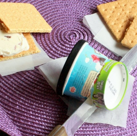 #HealthyKitchenHacks; Right Bite Ice Cream Sandwich