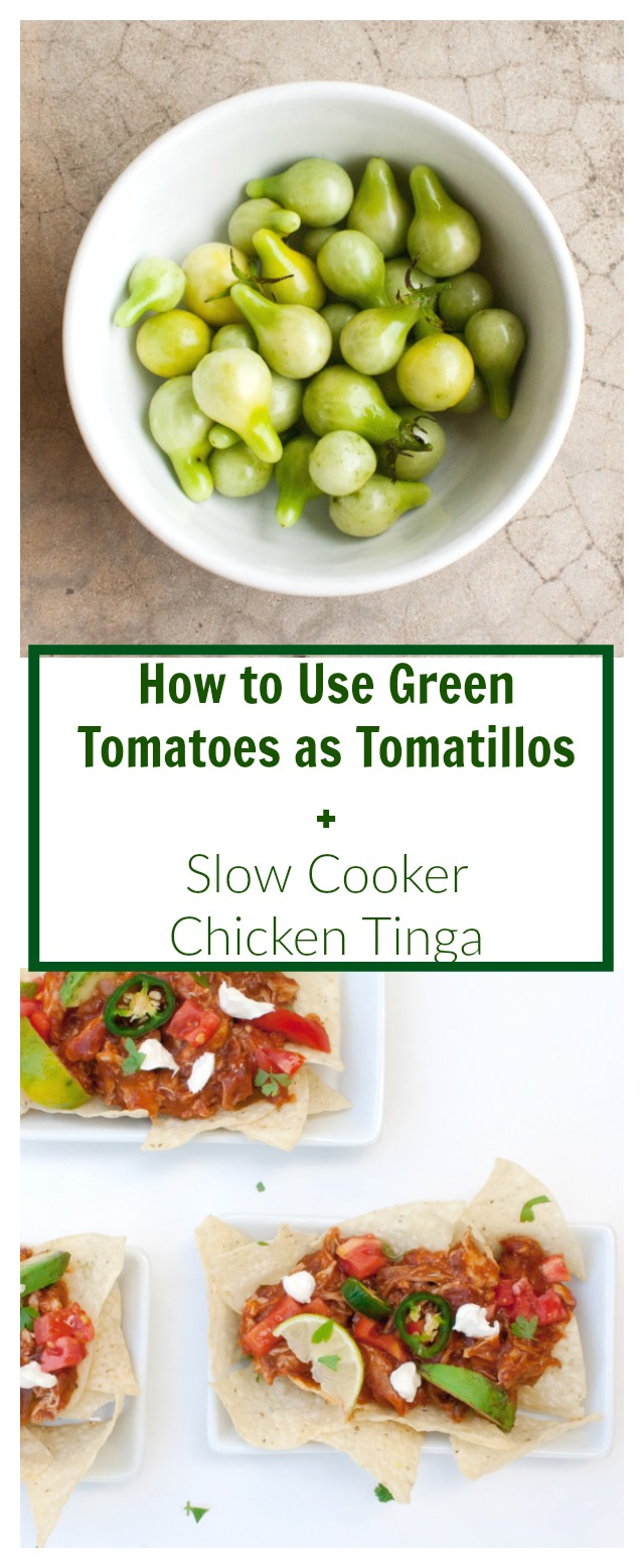 Use up your green tomatoes! HOW TO USE GREEN TOMATOES AS TOMATILLOS + SLOW COOKER CHICKEN TINGA WITH CHIPS   @TspCurry