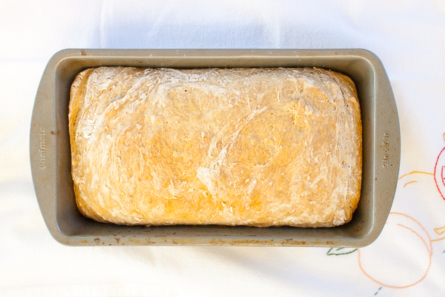 An easy schedule to roadmap how long it takes to make bread: HOW LONG DOES BREAD HAVE TO RISE   @TspCurry #whole wheat oatmeal bread